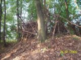 Bitva v lese 2006 (26/76)