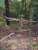 Bitva v lese 2006 (37/76)