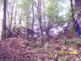 Bitva v lese 2006 (40/76)
