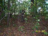 Bitva v lese 2006 (53/76)
