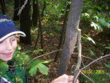 Bitva v lese 2006 (57/76)