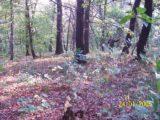 Bitva v lese 2006 (69/76)