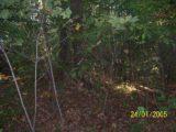 Bitva v lese 2006 (75/76)